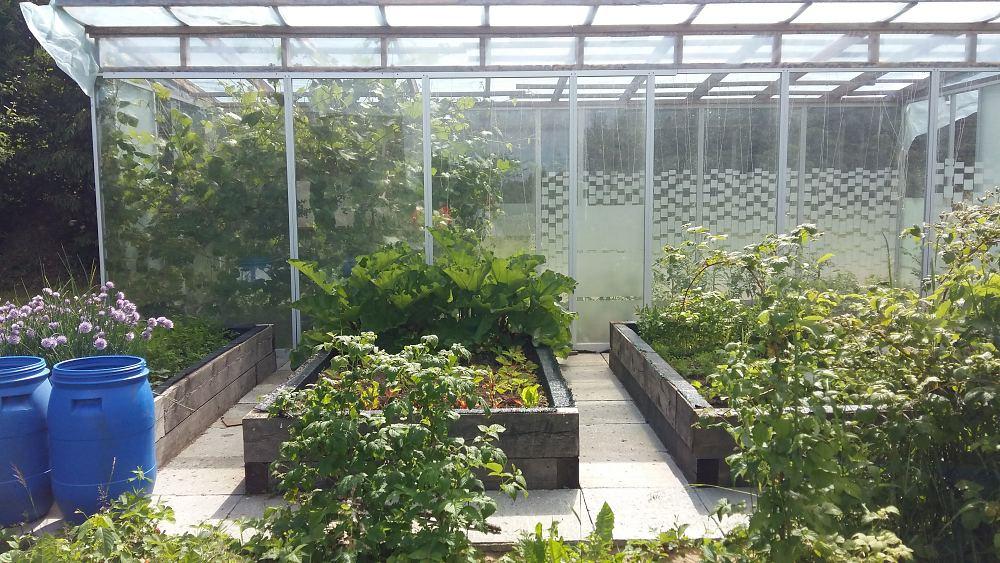 aiakujunduse koolitus harku vallas k tke k las jaanisauna talus. Black Bedroom Furniture Sets. Home Design Ideas